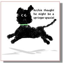 Archie springer_2